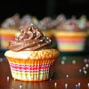 Perfect Yellow Cupcakes & Chocolate Buttercream